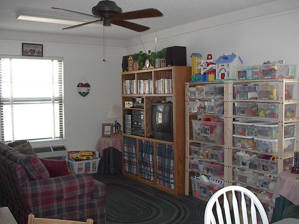 Toy organization